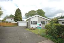 Detached Bungalow in 8 Ffrwd Vale, Neath