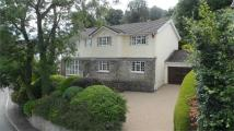 5 bedroom Detached home in Ashgrove, Walston Road...