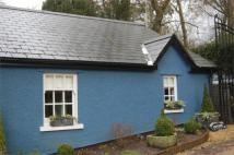 Semi-Detached Bungalow to rent in Bonvilston Cottage...