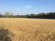 1.36 Acres of Pasture Land Farm Land