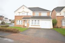5 bedroom Detached house in 2 Ffordd Y Dderwen...