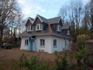 Detached home to rent in Glanwenny Lodge...