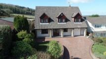 5 bed Detached property in Playford House...