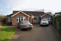 Detached Bungalow for sale in Weymouth Crescent...
