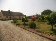 3 bed Equestrian Facility property in Furze Road, Felthorpe...