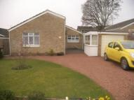 3 bed Bungalow for sale in Keats Road, Taverham...