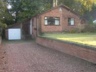 Bungalow for sale in Seton Road, Taverham...