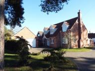 4 bed Detached house for sale in Beech Court...
