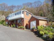 4 bedroom Detached property for sale in Chestnut Rise Rhyddyn...