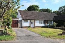 Bungalow for sale in Rowan Drive, Crowthorne