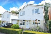 4 bed house for sale in The Brambles, Crowthorne