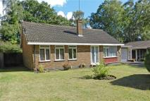 Bungalow to rent in Parkway, Edgcumbe Park...