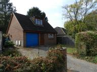 Bungalow to rent in Pinehill Road, Crowthorne