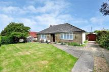 Bungalow to rent in Rew Street, Gurnard...