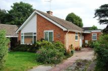 Detached Bungalow for sale in Grange Park, Albrighton...