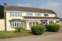 5 bedroom Detached property for sale in Holyhead Road...