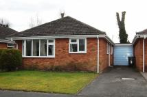Bungalow in The Limes, Albrighton...