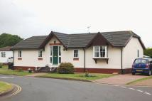 2 bedroom Detached Bungalow for sale in Cosford Park Homes...