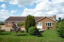4 bed Detached Bungalow in Woad Lane, Long Sutton...