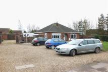 Detached Bungalow for sale in Delph Road, Long Sutton...