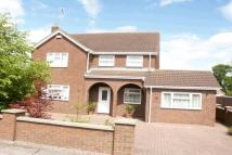 Detached property for sale in Woad Lane, Long Sutton...