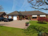 3 bed Detached Bungalow for sale in Delph Fields...