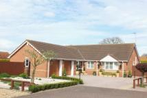 Detached Bungalow for sale in Cowpers Gate...