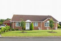 Detached Bungalow for sale in Midsummer Gardens...