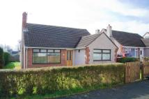 Bungalow for sale in Haverfordwest