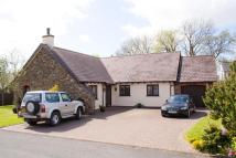 Bungalow for sale in Crundale, Haverfordwest