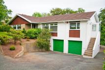 4 bed Detached house in Haverfordwest