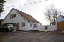 3 bedroom Detached Bungalow for sale in Bush Hill, Pembroke
