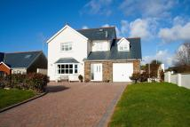 Detached home in Fort Rise, Milford Haven...