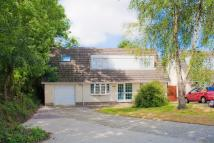Detached Bungalow for sale in Elm Park, Crundale, SA62