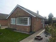 Bungalow to rent in Upperfield Drive...