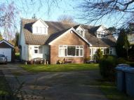 Elmham Drive house to rent