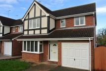 4 bed home in Newby Drive, Ipswich