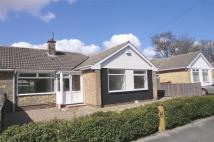 3 bedroom Semi-Detached Bungalow in Redcliff Drive...