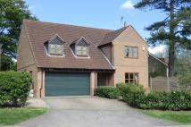 4 bed Detached home in Cedar House Townside...