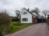 Detached property for sale in Beech Avenue, Rode Heath