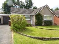 Bungalow for sale in Heathwood Drive, Alsager...