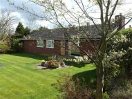 4 bed Detached Bungalow for sale in The Backlands, Crewe