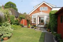 Detached Bungalow in Proctors Lane...