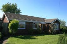Detached Bungalow for sale in Congleton Road...