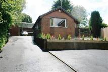 4 bed Detached Bungalow for sale in Newcastle Road, Talke...