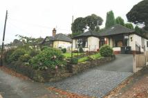 Newcastle Road Detached Bungalow for sale