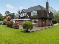 Detached home for sale in Bradwell Lane, Bradwell...