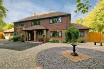 5 bed Detached house in Mill Lane, Shepherdswell...