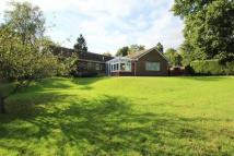 4 bedroom Detached Bungalow for sale in Spout Hill, Rotherfield