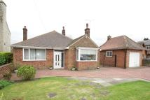 Detached Bungalow for sale in Sunderland Street...